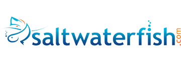 Saltwaterfish logo