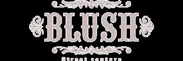 Blush Fashion logo