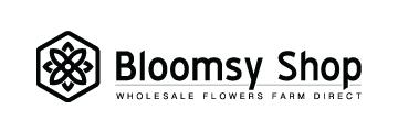 BloomsyShop logo