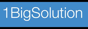 1BigSolution logo