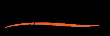 Stylisess Clinicals logo