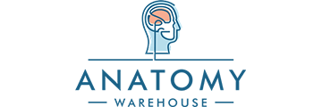 Anatomy Warehouse logo